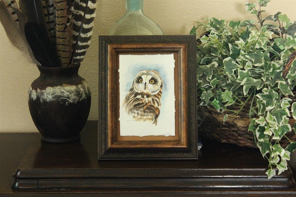 """Short-eared Owl"" original fine art by Catherine Temple"
