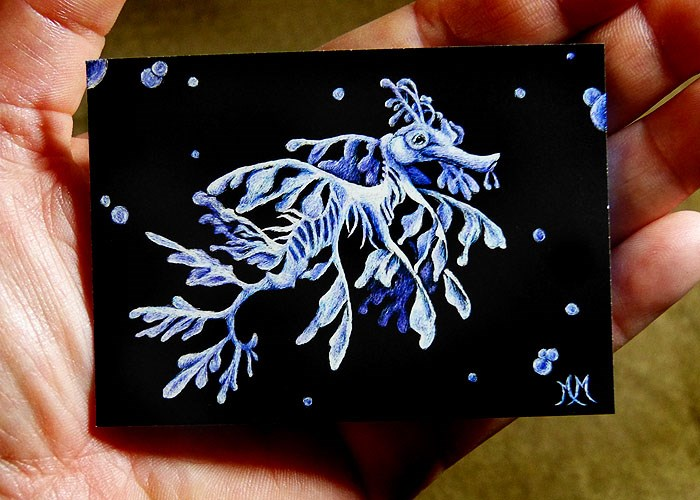 """Leafy Sea Dragon"" original fine art by Monique Morin Matson"