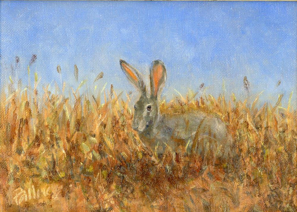 """Field Study VI"" original fine art by Susanne Billings"