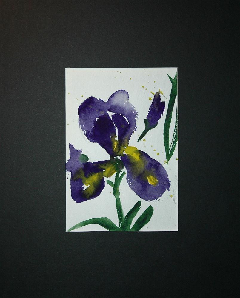 """Iris"" original fine art by Ulrike Schmidt"