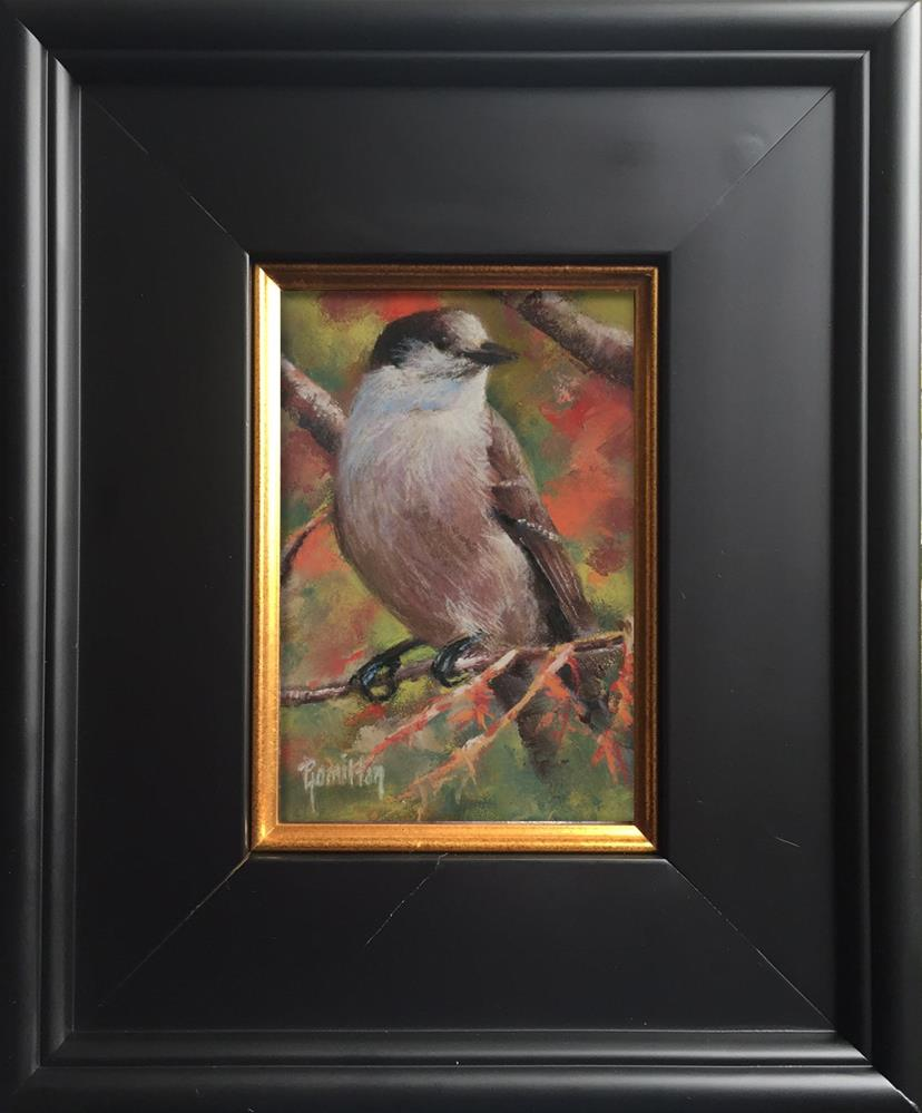 """Jay"" original fine art by Pamela Hamilton"