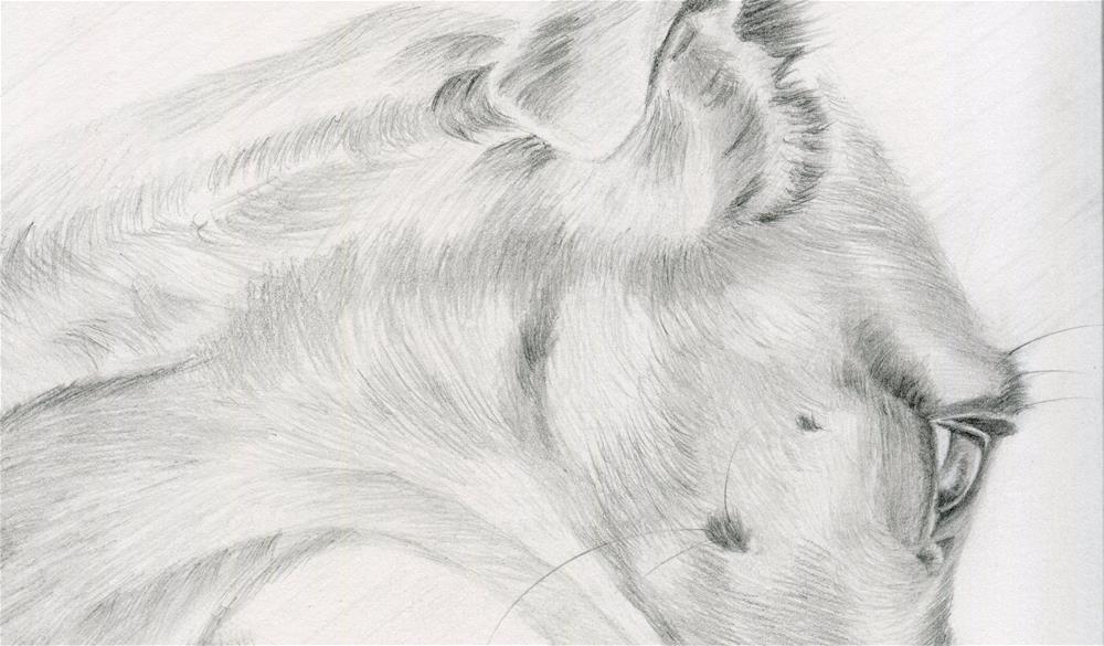 """""""Whippet Style"""" original fine art by Paulette Farrell"""