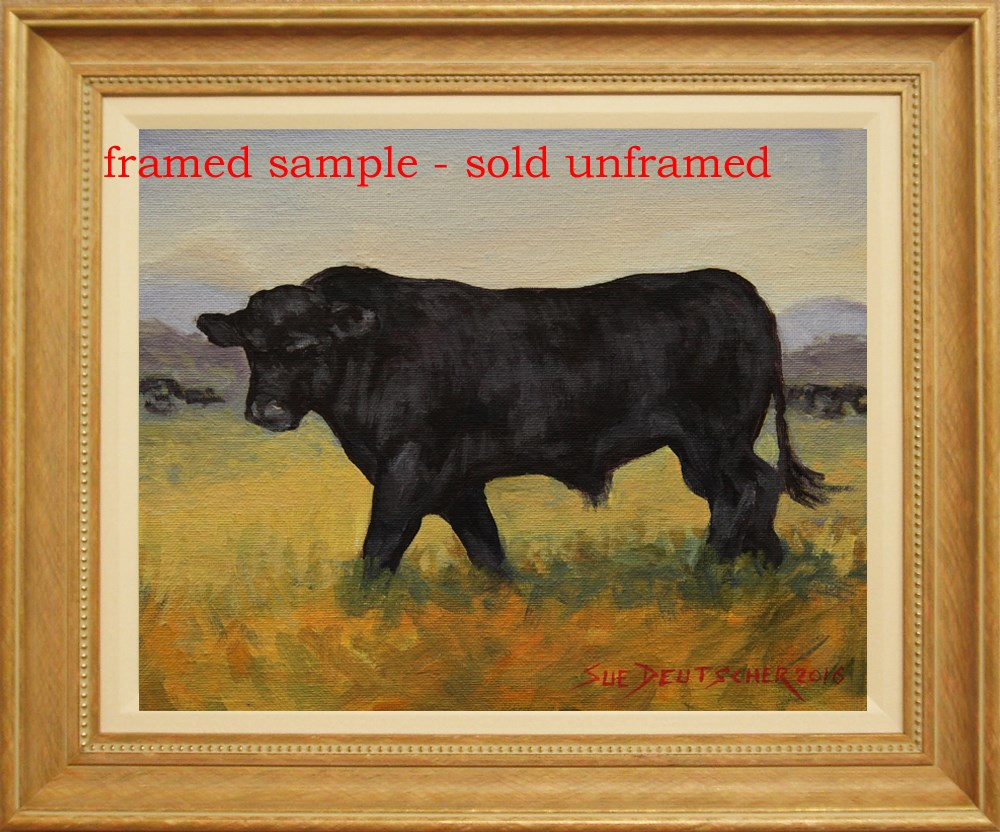 """Black Angus Bull"" original fine art by Sue Deutscher"