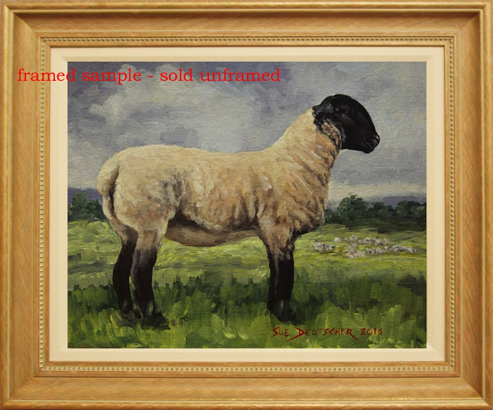 """""""Suffolk Sheep"""" original fine art by Sue Deutscher"""