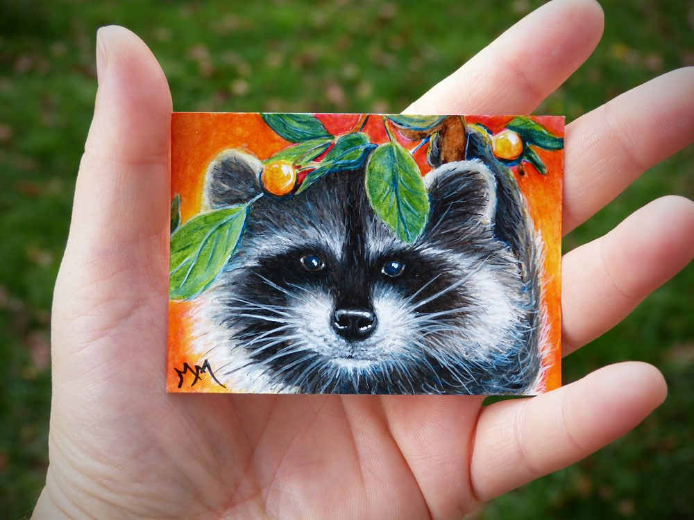 """Raccoon Face"" original fine art by Monique Morin Matson"
