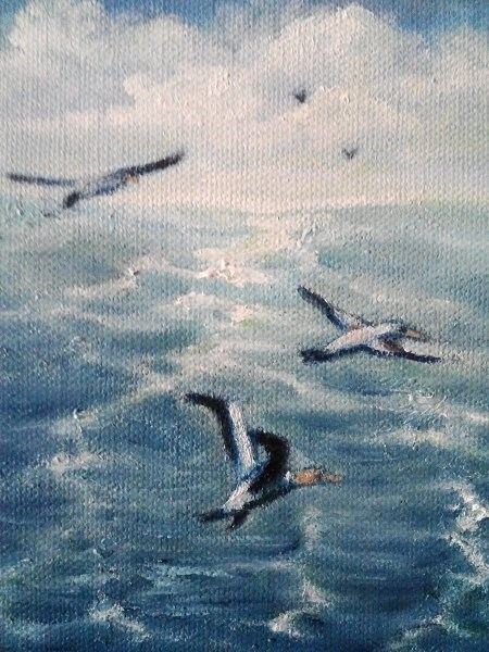 """""""Seascape with Ganets"""" original fine art by Camille Morgan"""
