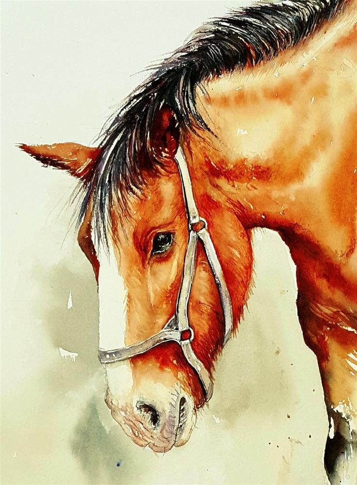 """Bruce the Brown Horse"" original fine art by Arti Chauhan"