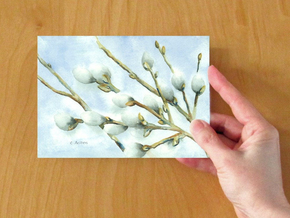 """""""Promise of Spring - Pussywillows"""" original fine art by Corinne Aelbers"""