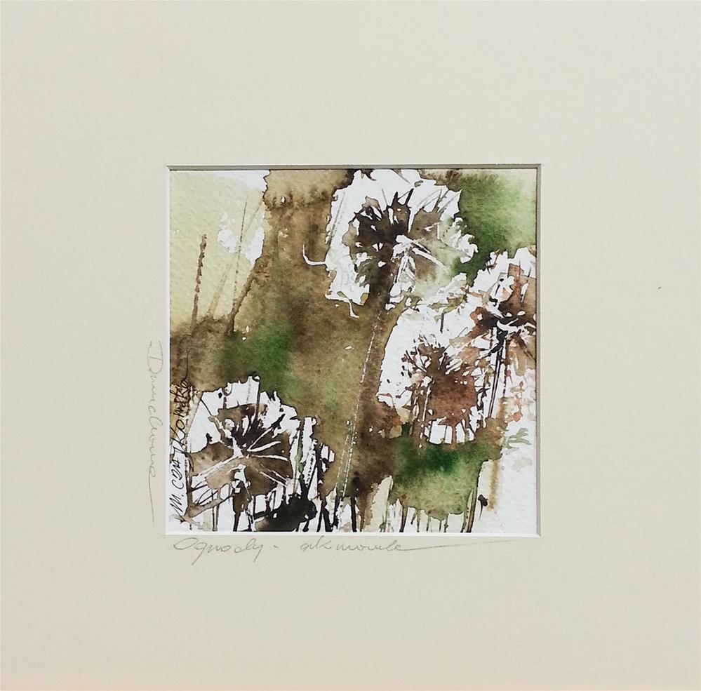 """Dandelion 3"" original fine art by Marlena Czajkowska"