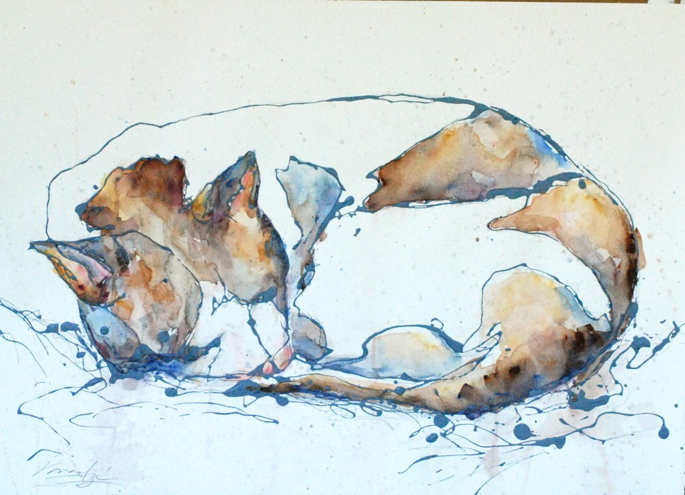 """afternoon nap"" original fine art by Vicki Wood"