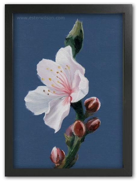 """""""Peach Blossom"""" original fine art by Ester Wilson"""