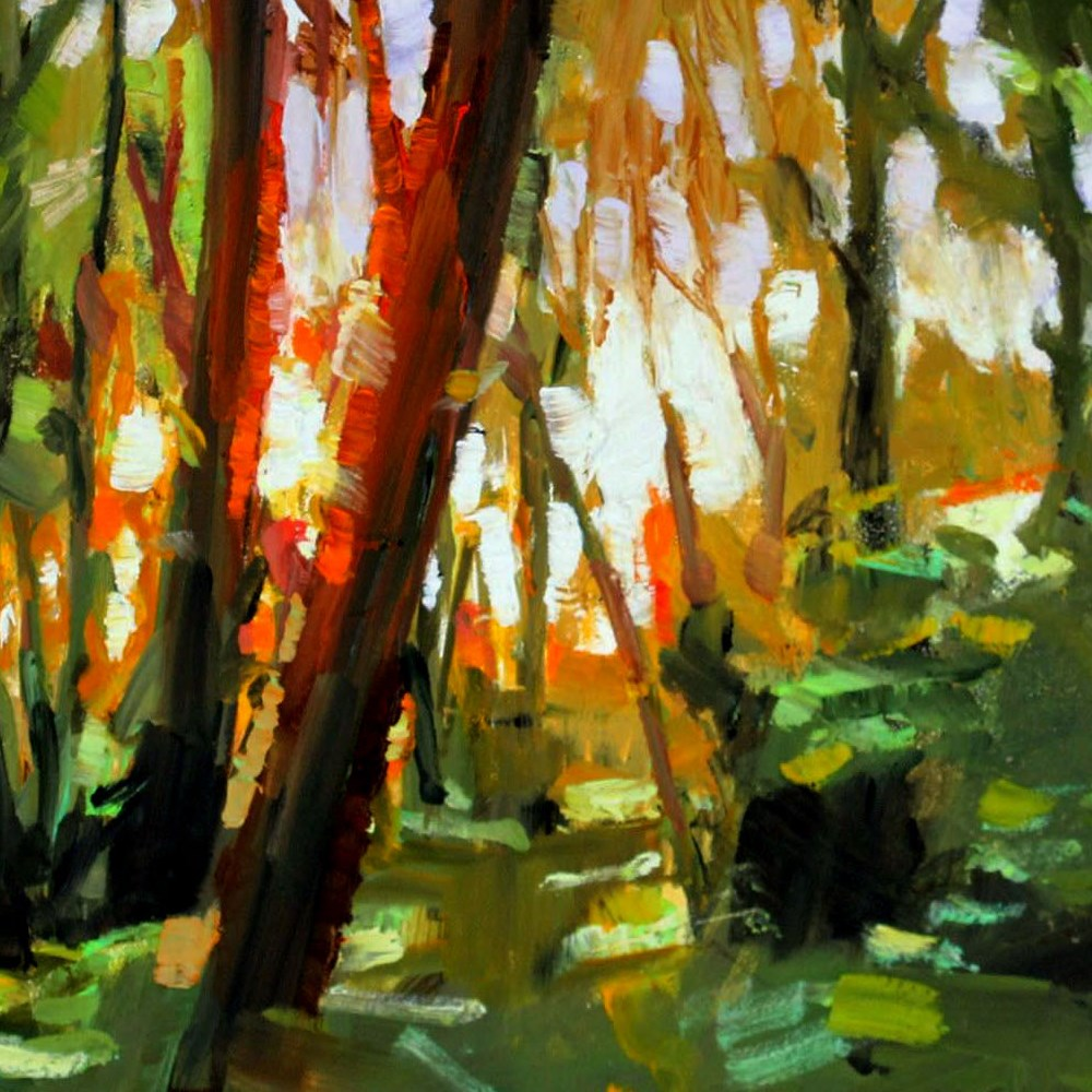 """Madrona Study"" original fine art by Gretchen Hancock"