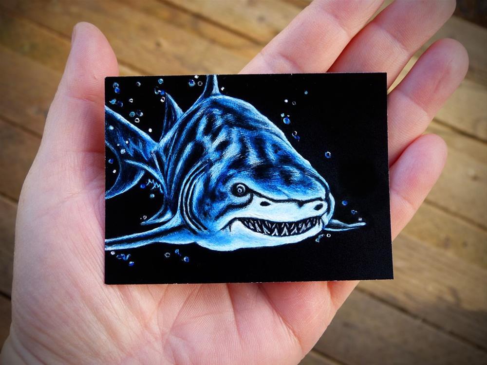 """Shark - SA104"" original fine art by Monique Morin Matson"