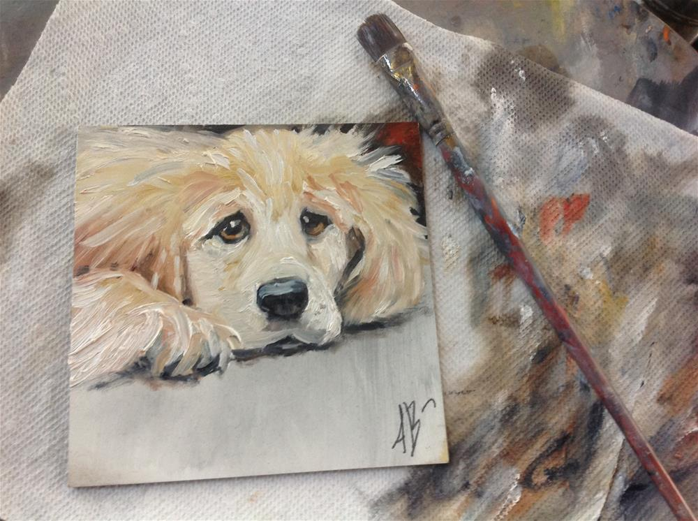 """Yellow Puppy Face"" original fine art by Annette Balesteri"