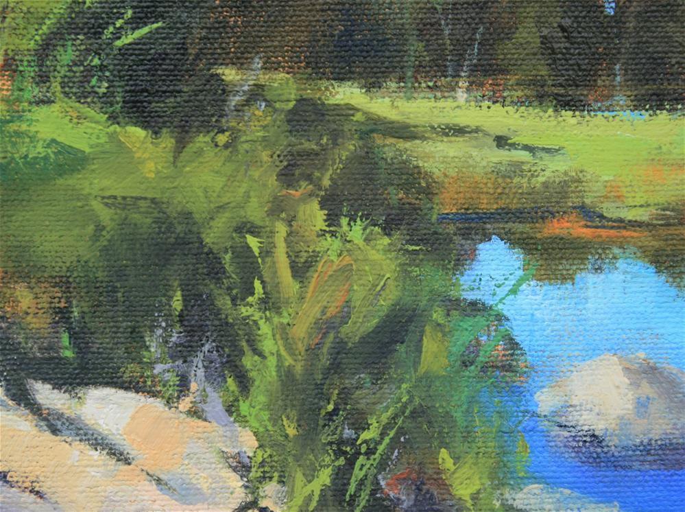 """Riverside Marsh"" original fine art by Jane Robertson"