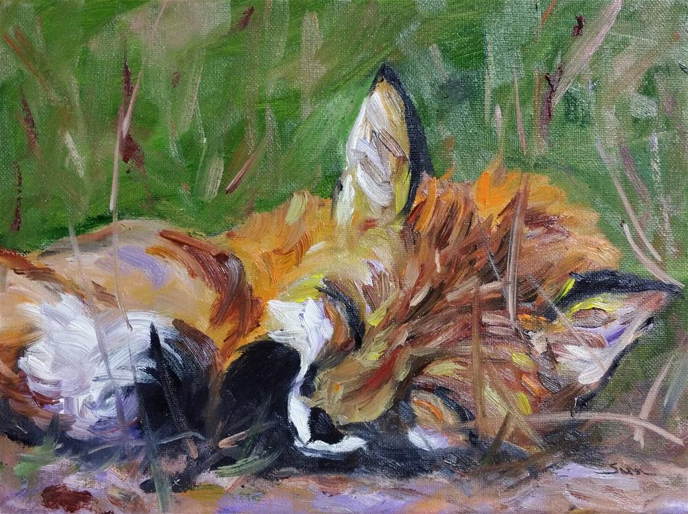"""sweet Fox nappping"" original fine art by Sun Sohovich"