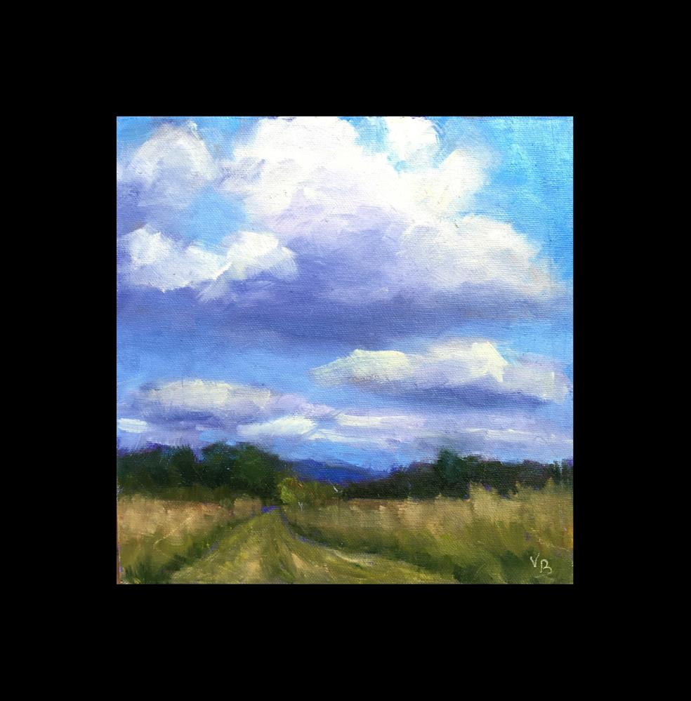 """Clouds Over Wetlands"" original fine art by Victoria  Biedron"