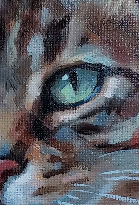 """Tabby in Teal"" original fine art by J. Dunster"