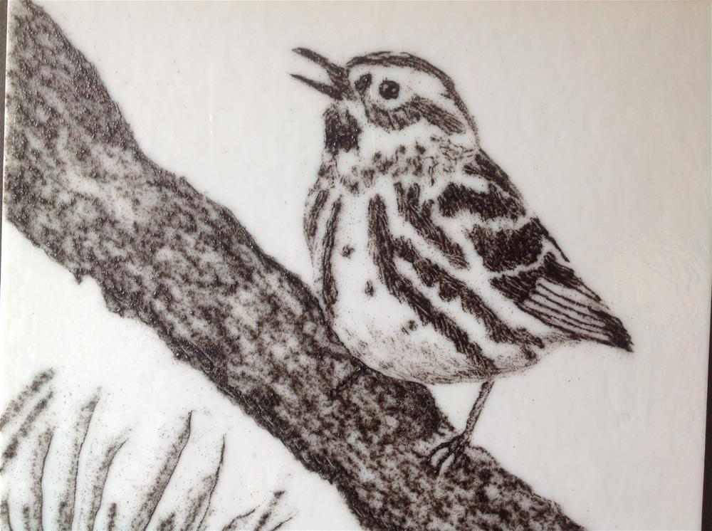 """Black and White Warbler"" original fine art by Calloway Meiners"