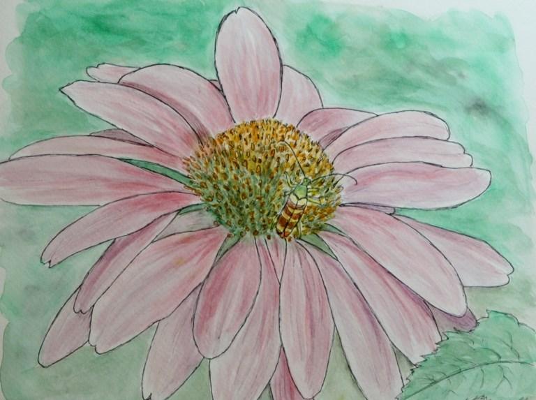 """Beetle on Coneflower"" original fine art by Mary Datum"