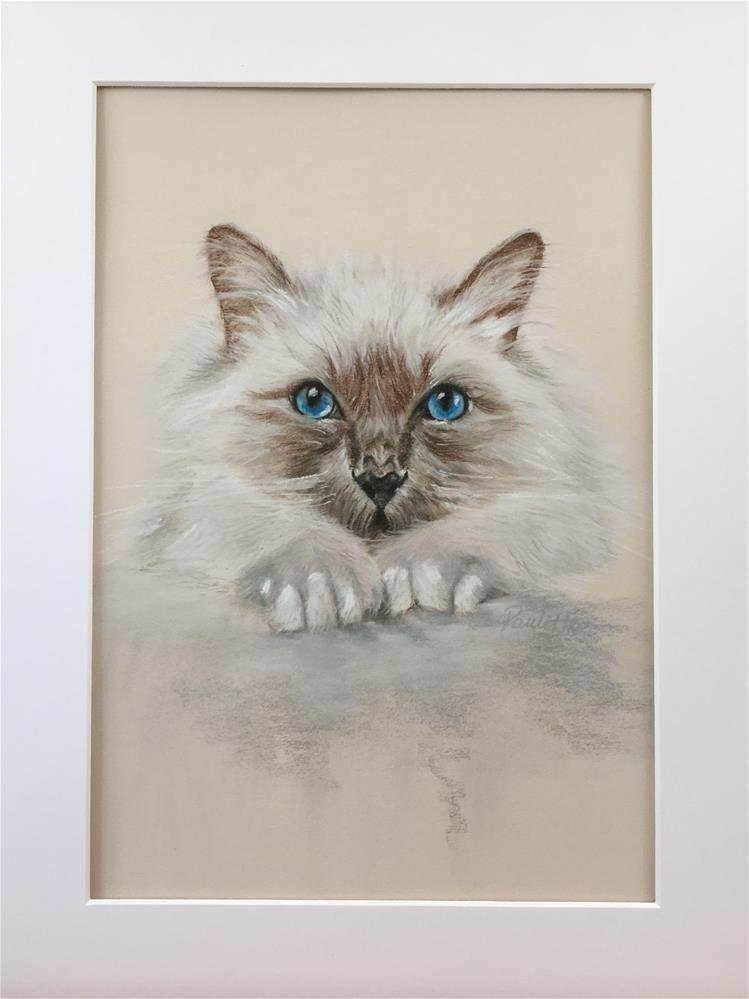 """Little Blue Eyes"" original fine art by Paulette Farrell"