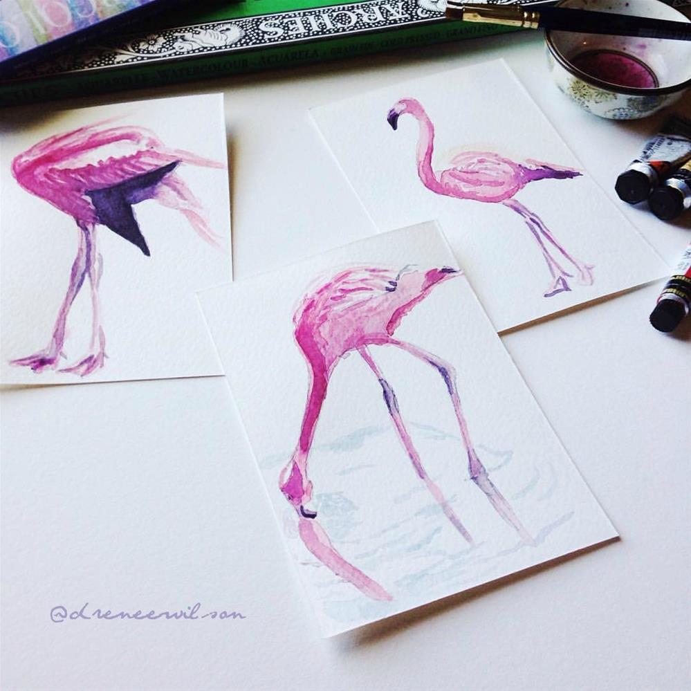"""Full Flamingo Study II"" original fine art by D. Renee Wilson"
