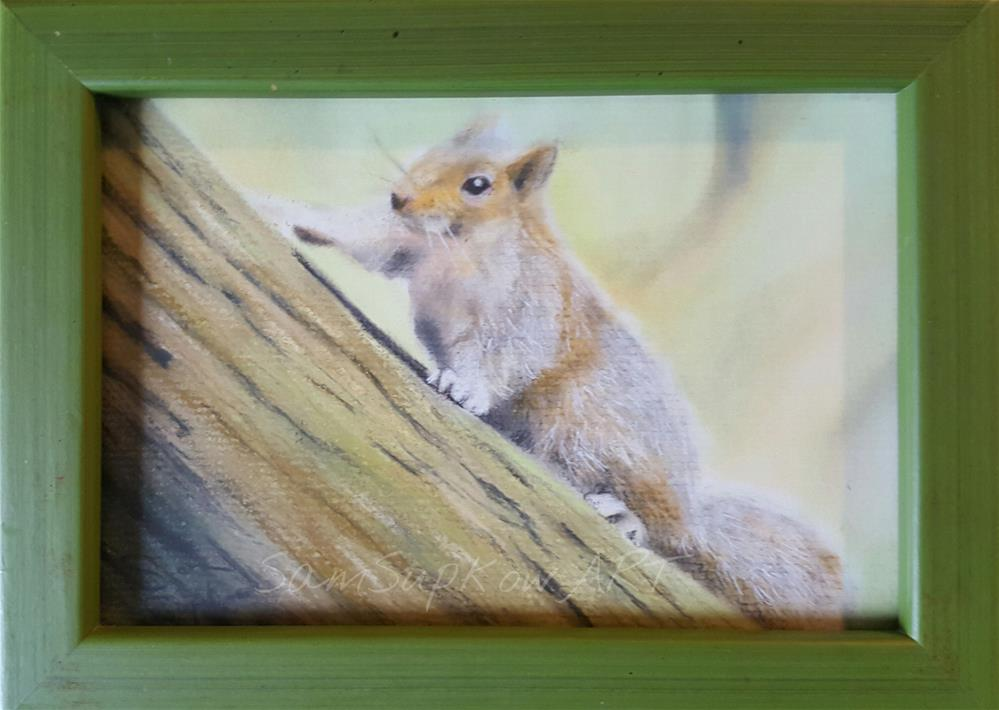 """Squirrel"" original fine art by Sam Supkow"