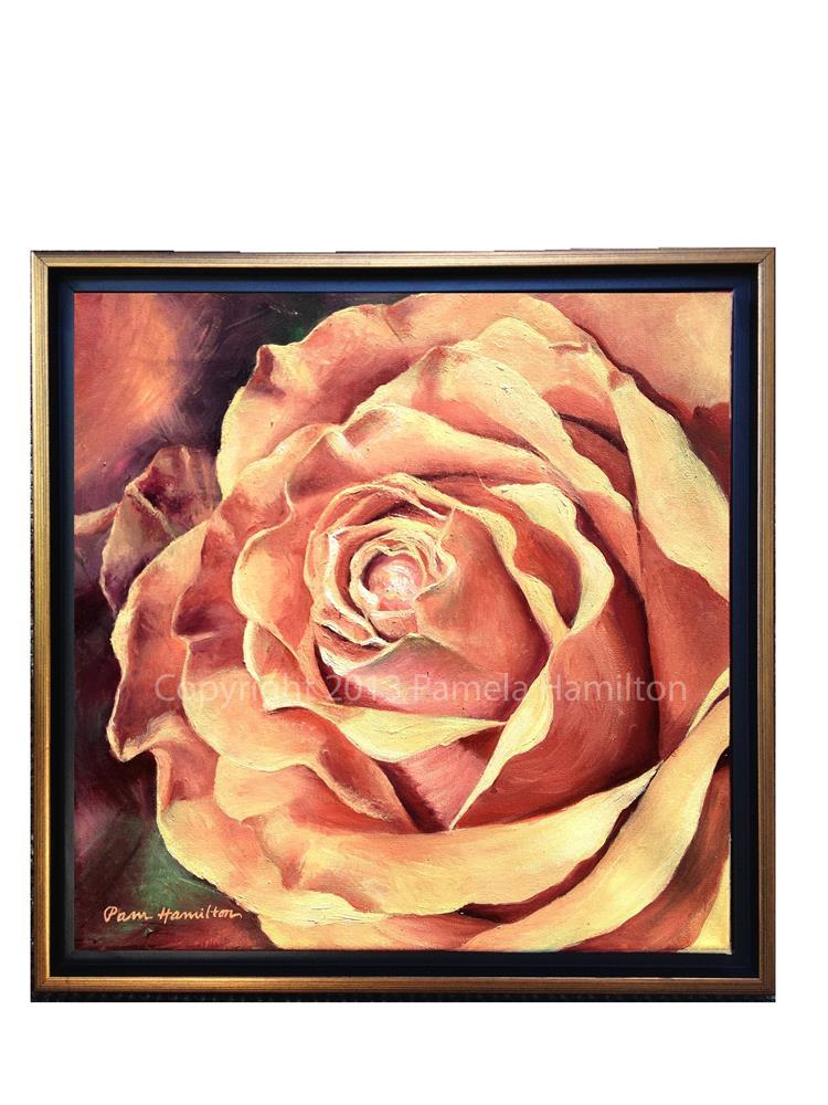 """Gracious Bloom"" original fine art by Pamela Hamilton"