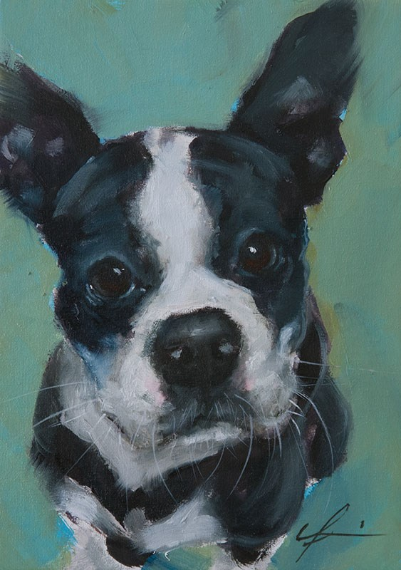 """Curious Boston"" original fine art by Clair Hartmann"