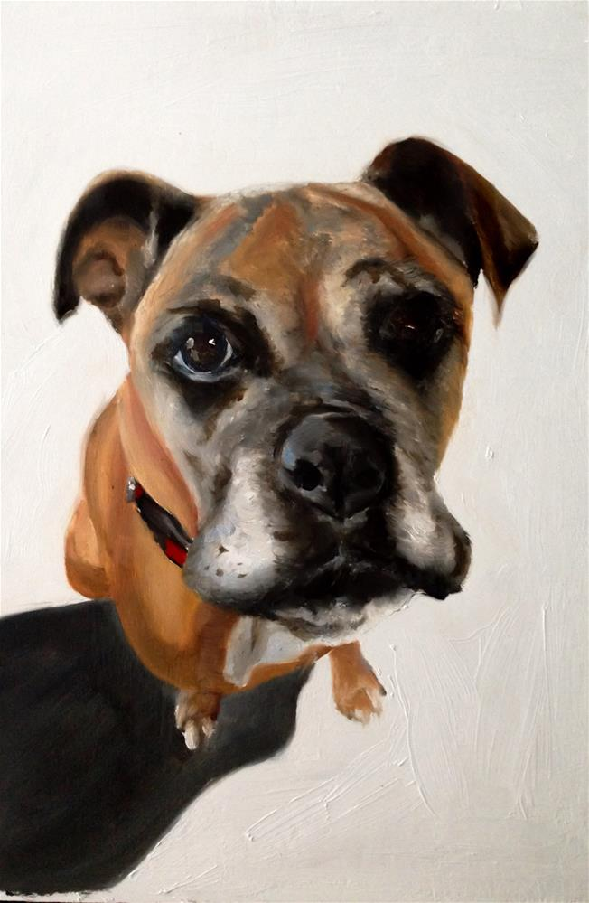 """Boxer Dog"" original fine art by James Coates"