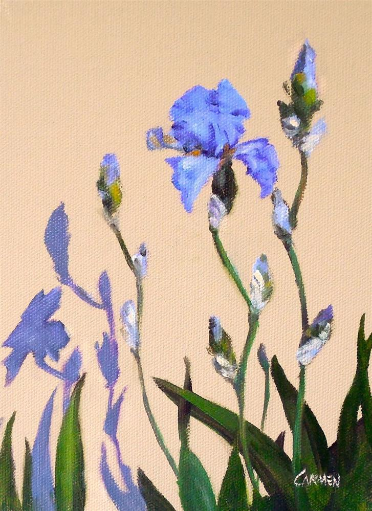 """Shadow Irises, 6x8 Oil on Canvas Panel, Floral Daily Painting"" original fine art by Carmen Beecher"
