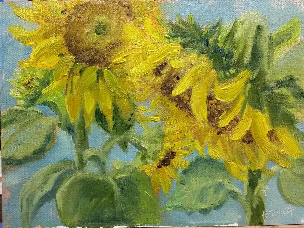 """Sunflowers 1-en plein air"" original fine art by Veronica Brown"