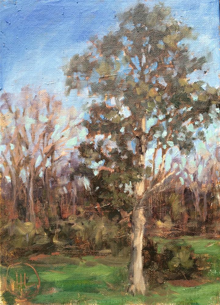 """old cedar"" original fine art by Dottie  T  Leatherwood"