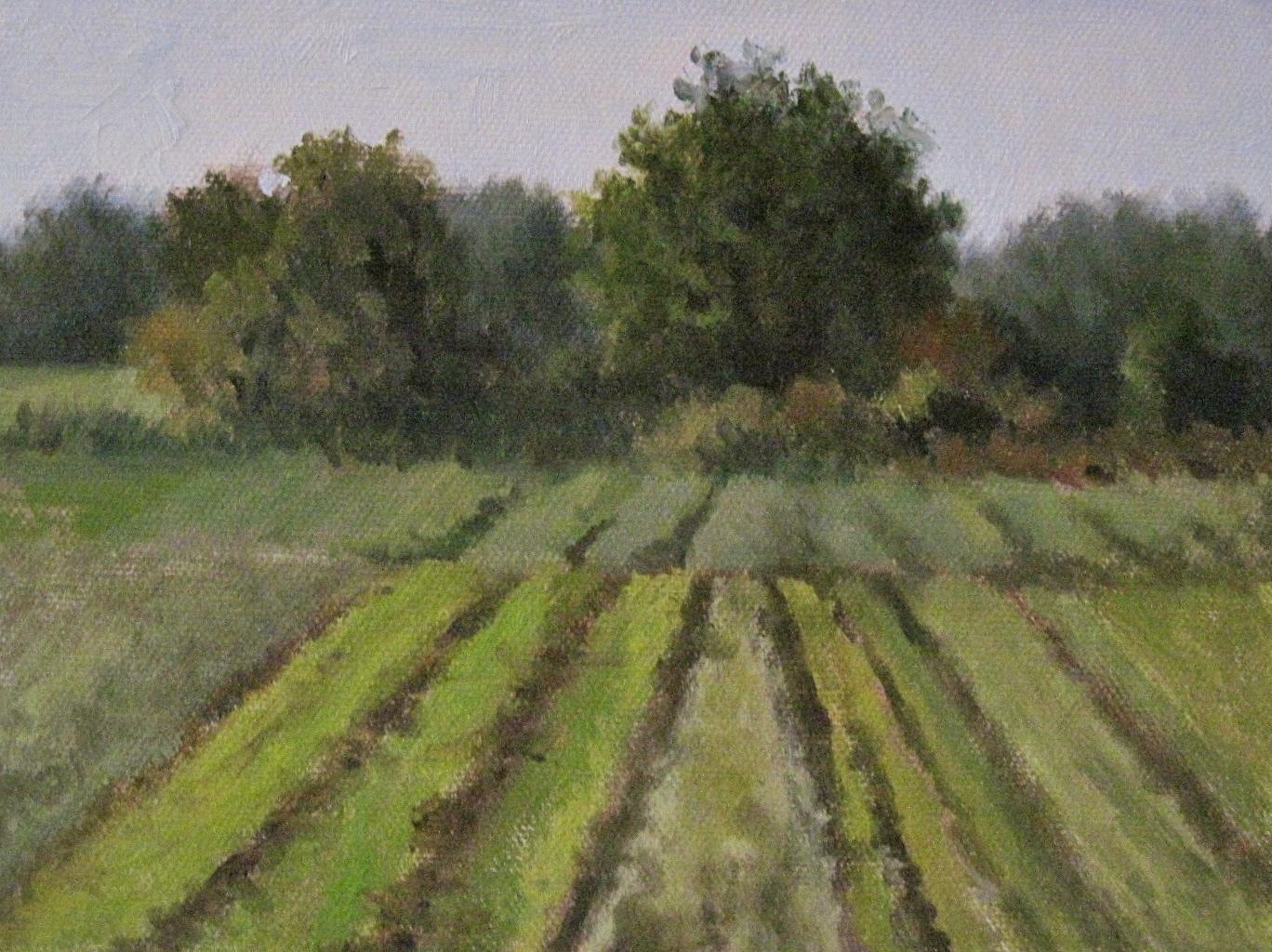 """""""Verrill Farm - Concord MA"""" original fine art by Michelle Garro"""