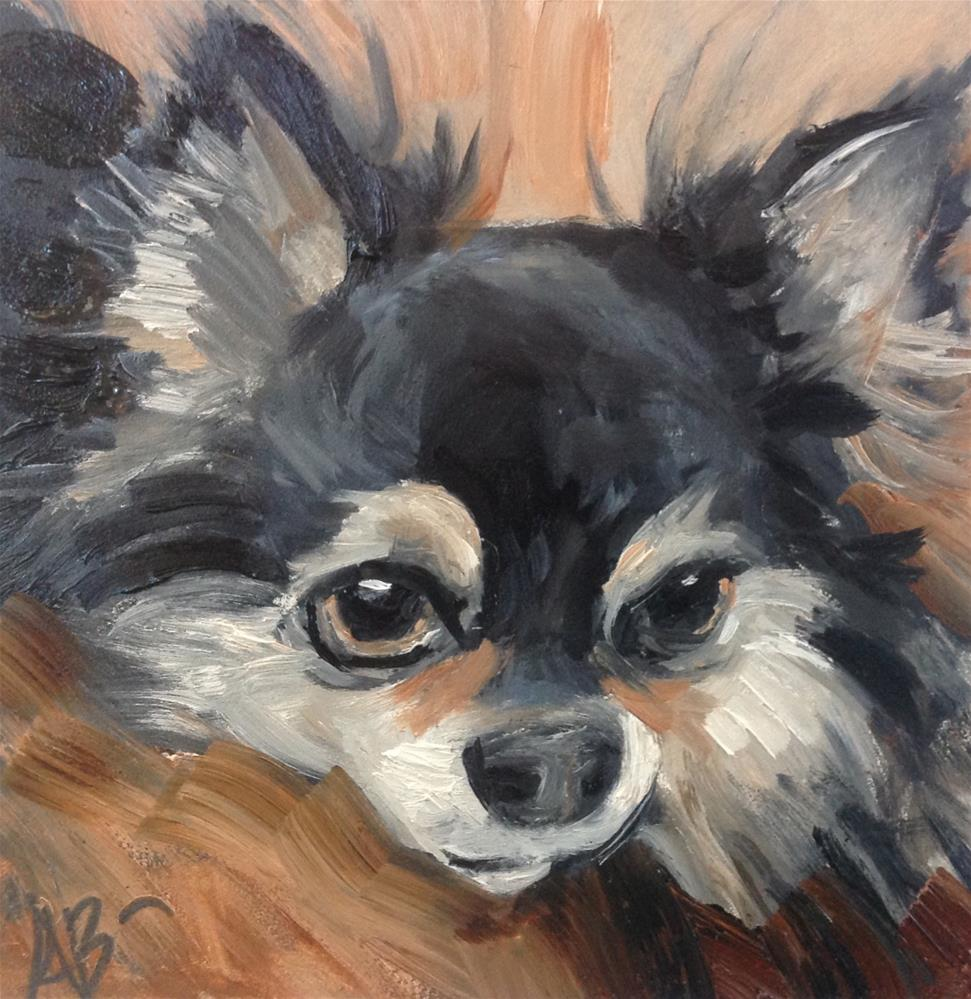"""Cute Chihuahua"" original fine art by Annette Balesteri"