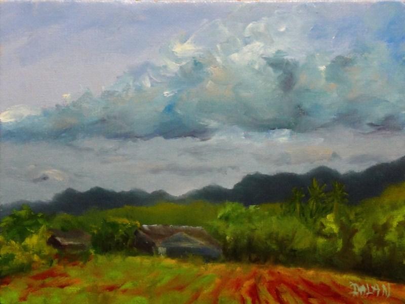 """Dark Skies Over Hamakua Marsh"" original fine art by Dalan Wells"