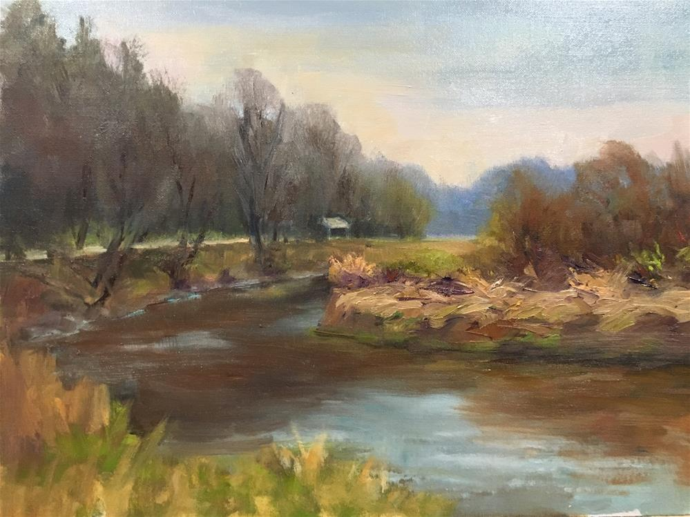 """Morning on the Canon River"" original fine art by Judith Anderson"