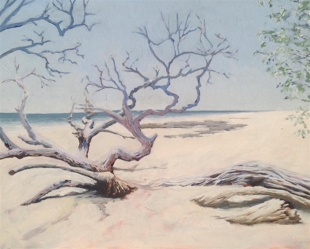 """Beach Tree"" original fine art by Jim Musil"