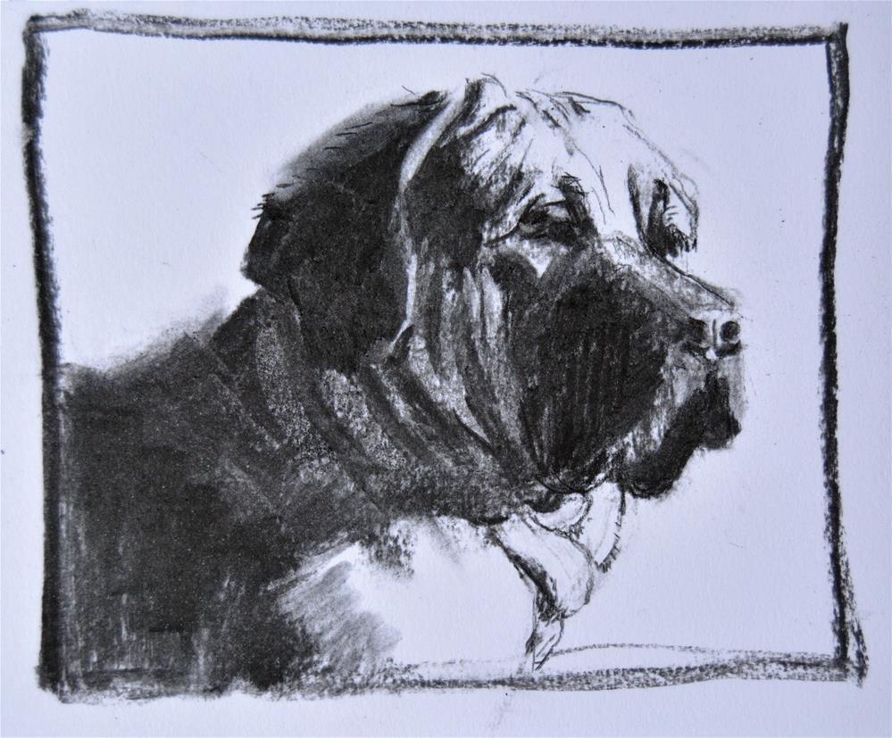 """Brazilian Mastiff"" original fine art by Cindy McDonough"