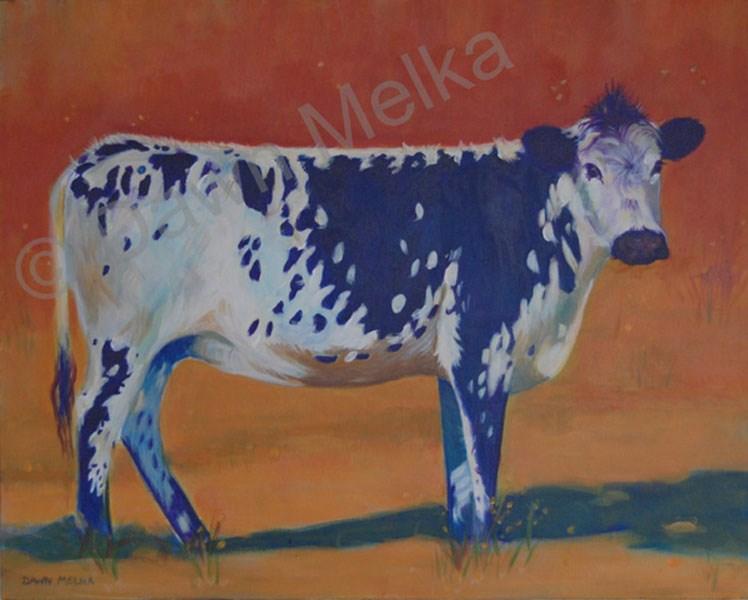 """Cow in feild"" original fine art by Dawn Melka"