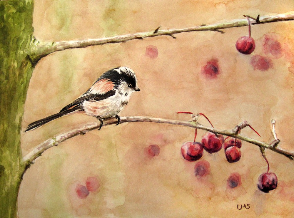 """Long-tailed Tit"" original fine art by Ulrike Miesen-Schuermann"