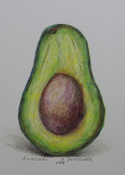 """""""Avocado"""" original fine art by Sue Deutscher"""