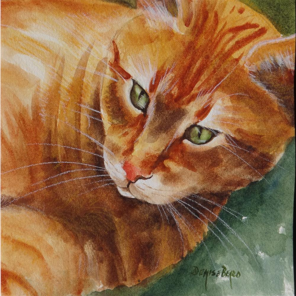 """Rockport Cat"" original fine art by Denise Beard"