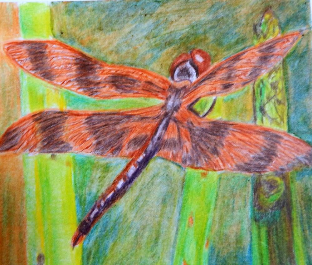"""Dragonfly in the Asparagus Patch"" original fine art by Elaine Shortall"