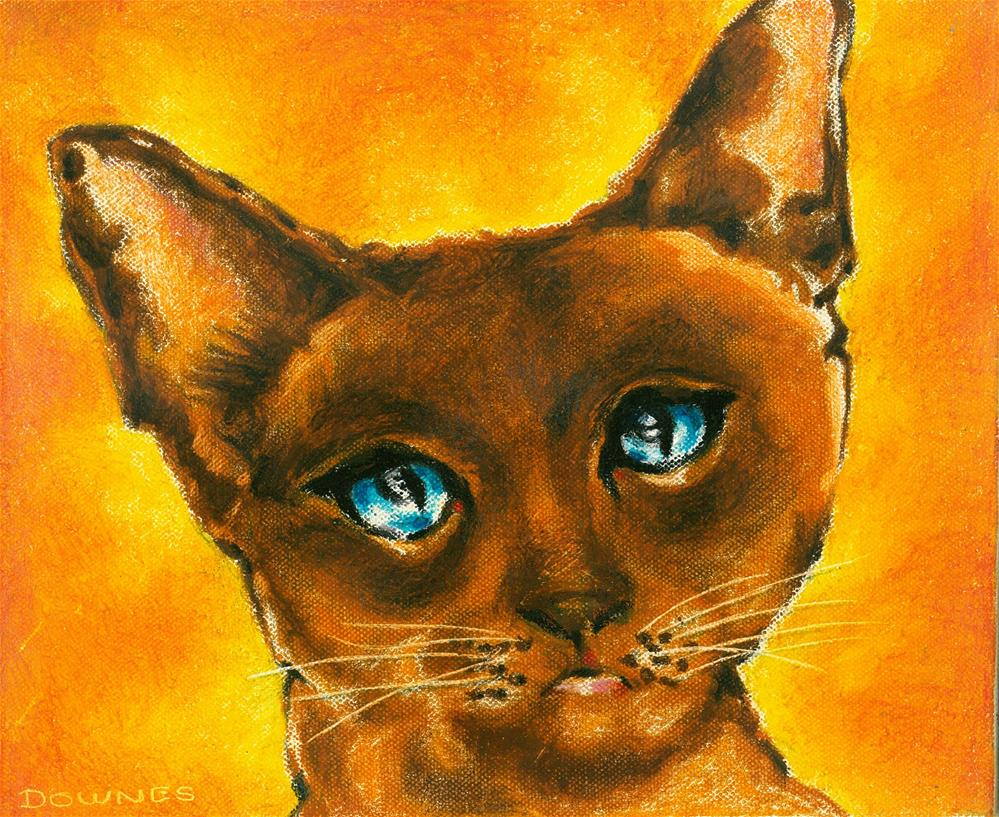 """136 CAT 1 SASHA"" original fine art by Trevor Downes"