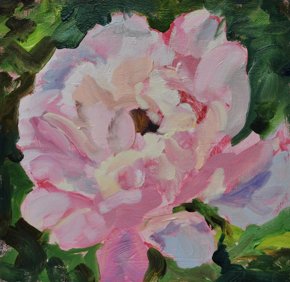 """Pale Pink Peonie"" original fine art by Catherine Crookston"