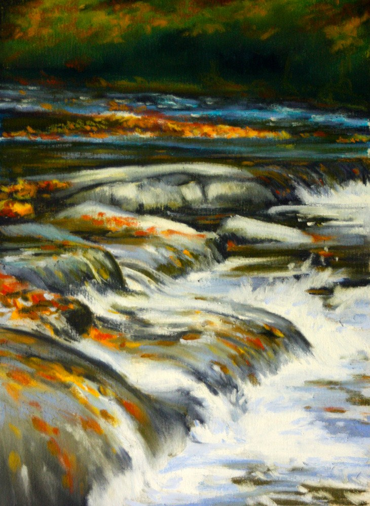 """Whitewater, Yellow River, Georgia"" original fine art by Jill Bates"