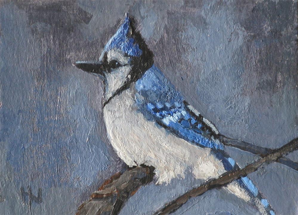 """Blue Jay"" original fine art by Heather Nibert"