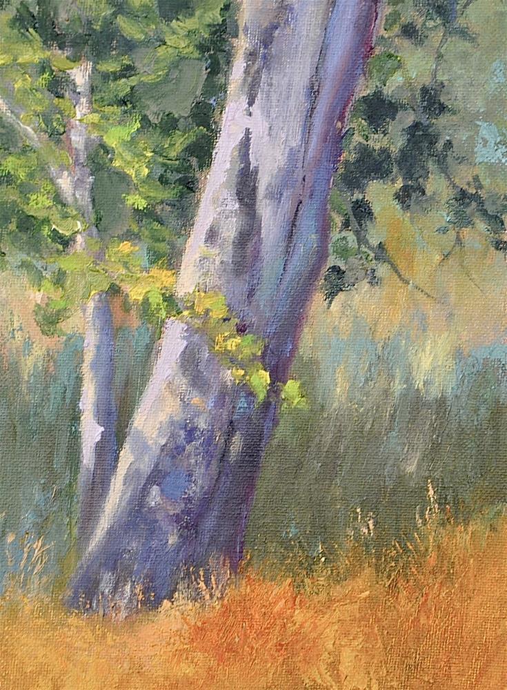 """Fall Sycamore"" original fine art by Jacquelyn Blue"