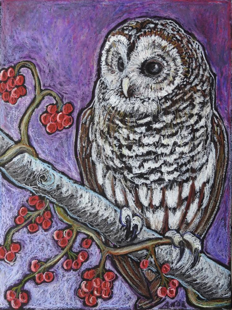 """Barred Owl"" original fine art by Ande Hall"